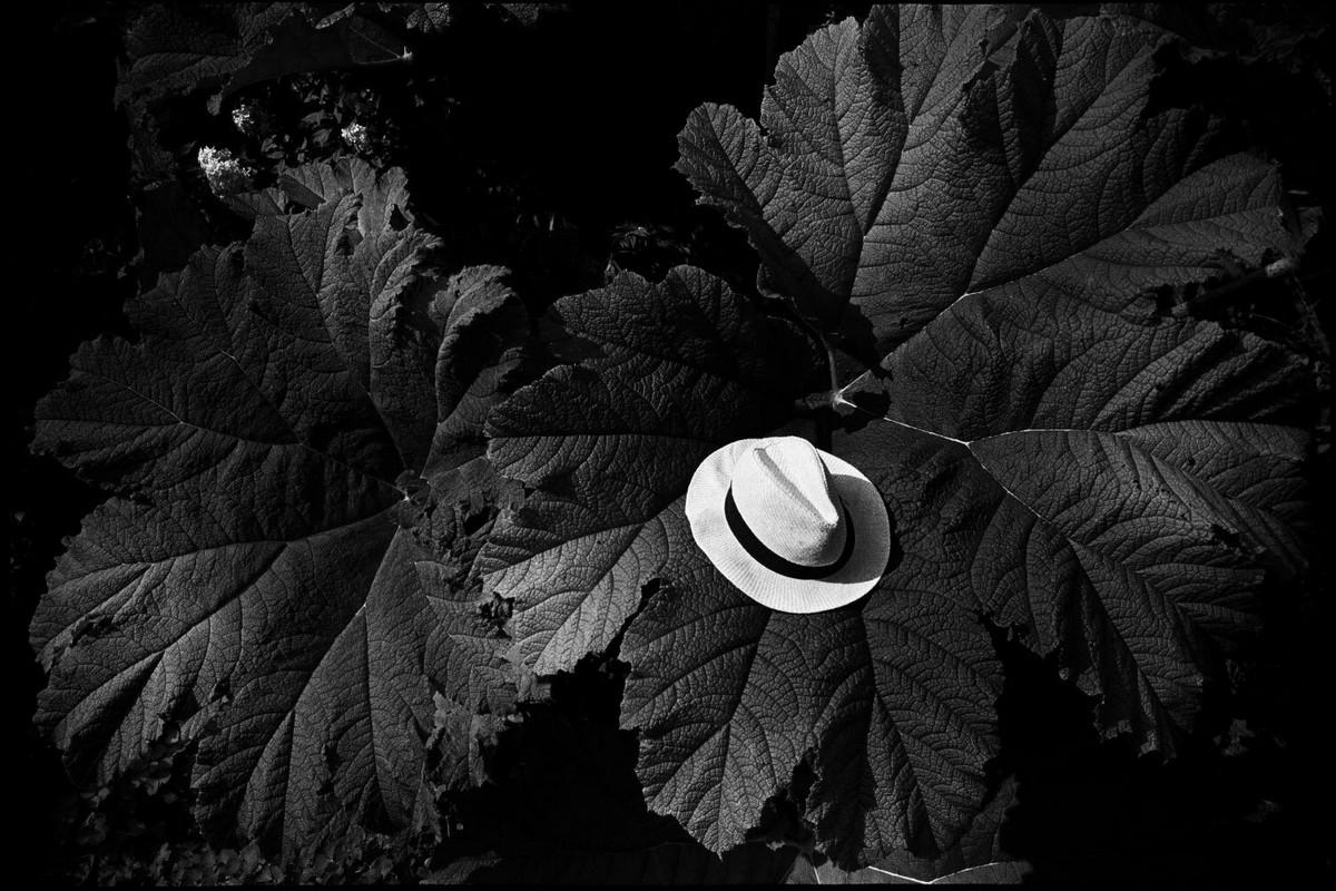 Сирил Дрюар: «Мне нравится, когда кто-то смотрит на мои фотографии и вздыхает» 15