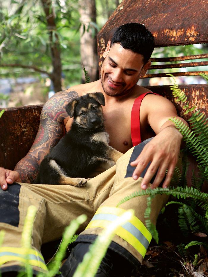 Пожарные Австралии снялись с животными для благотворительного календаря 2020  1 11