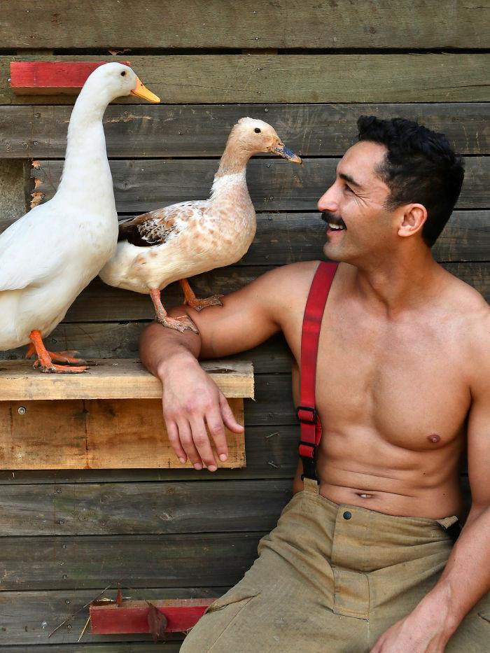 Пожарные Австралии снялись с животными для благотворительного календаря 2020  27