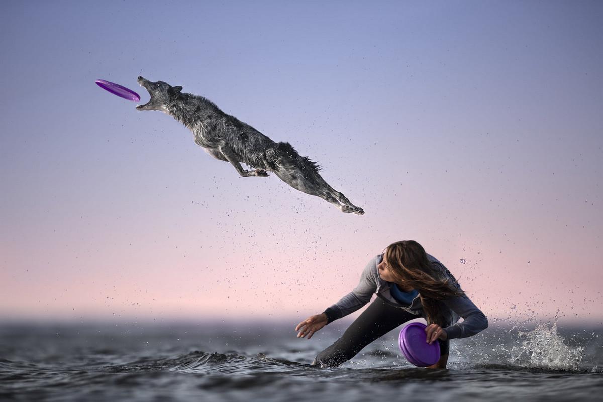 Супер собаки в фотографиях Клаудио Пикколи 9