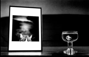 Черно-белые фотографии Джиба Петера - игра с эмоциями