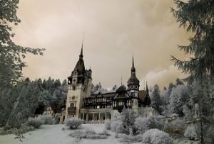 Сказочные примеры инфракрасной фотографии
