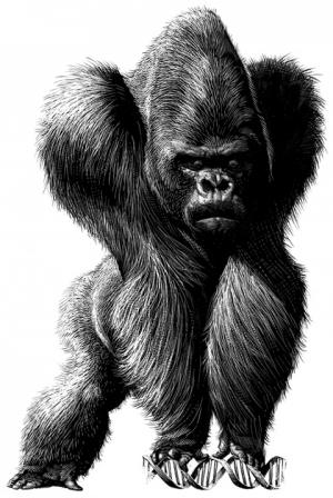 Карикатуры Рикардо Мартинеза