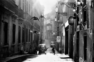 10 мастеров в жанре уличной фотографии