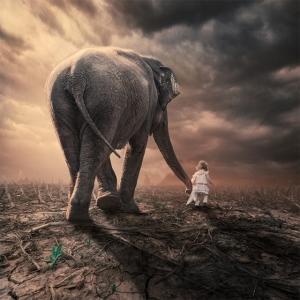 Сюрреалистический фотошоп от  Караса Ионуца (Caras Ionut)