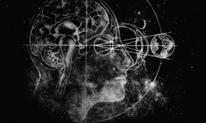 Вселенная мозга: Святослав Медведев о механизмах работы самого загадочного органа и связанных с ним мифах