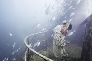 Тонущий мир - подводная фотография Андреаса Франке