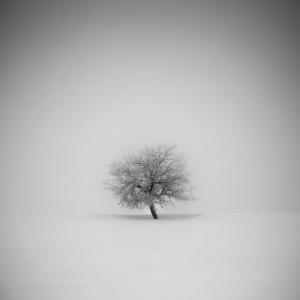 Чешский фотограф Даниел Жежиха