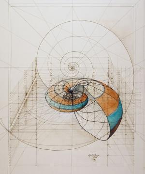 Книжка-раскраска с золотыми пропорциями. Иллюстратор Рафаэль Араухо