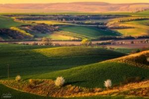 Наедине с природой в пейзажной фотографии Янека Седлара