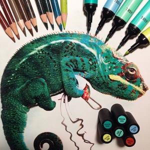 Гиперреалистичные рисунки животных от Карлы Миалинн